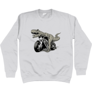 Bargain Range Child's Dino Bike Sweatshirt
